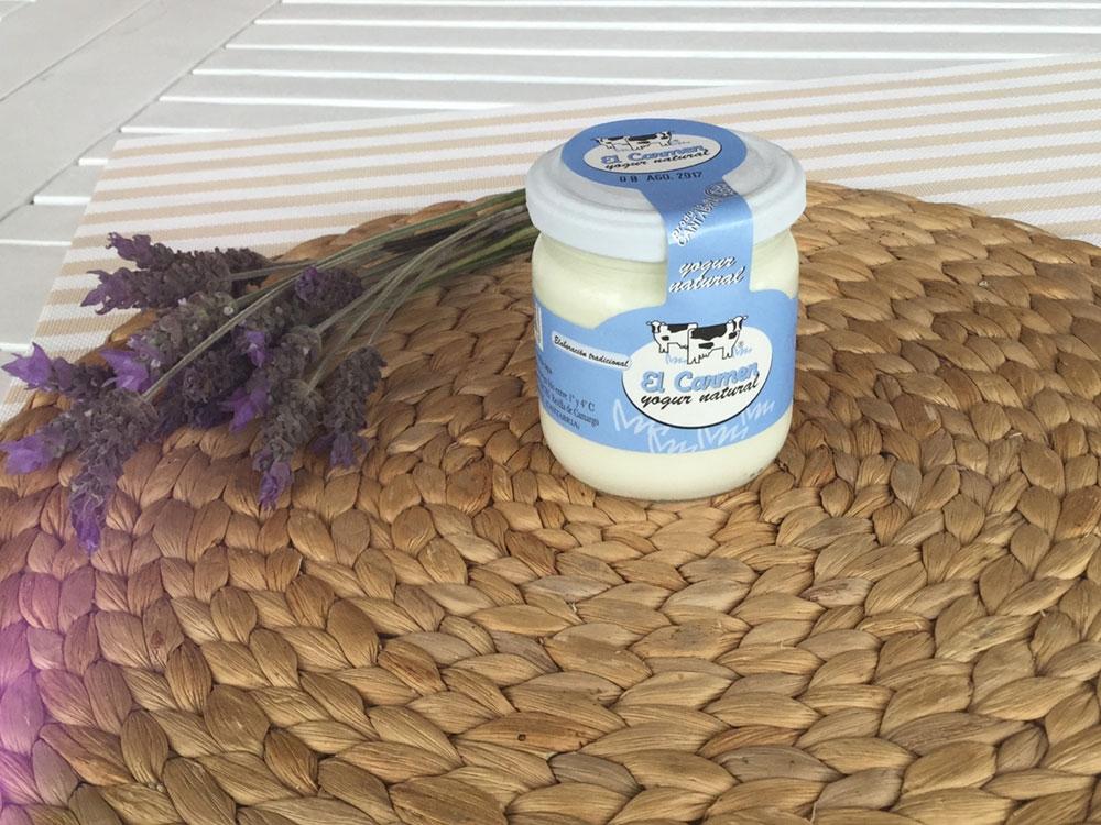 Foto-yogur-natural